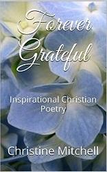 FG Kindle Cover (Purple)