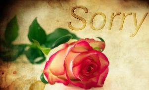 rose-re-forgiveness
